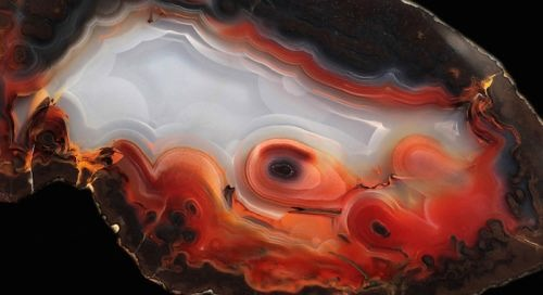 Graceful agate