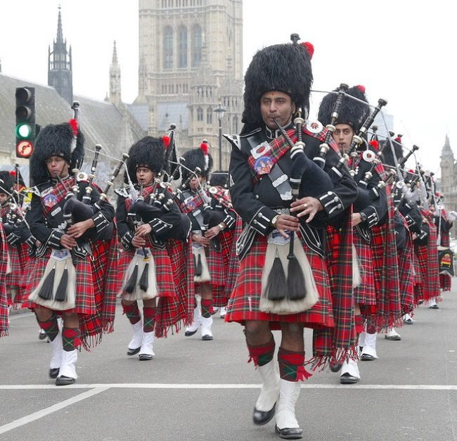 Indian piper orchestra