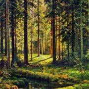 Landscape. 1895