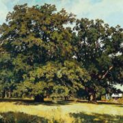 Mordvin oaks, 1891