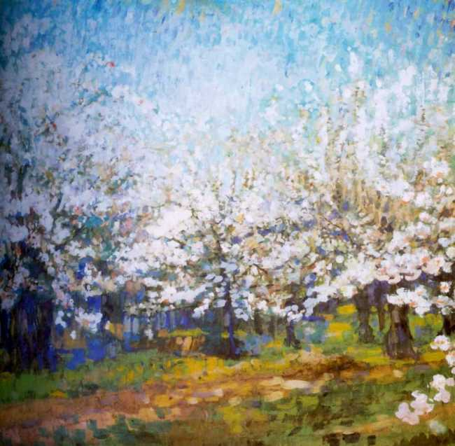 Blooming apple trees. Early 1900s