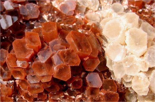 Young and beautiful aragonite