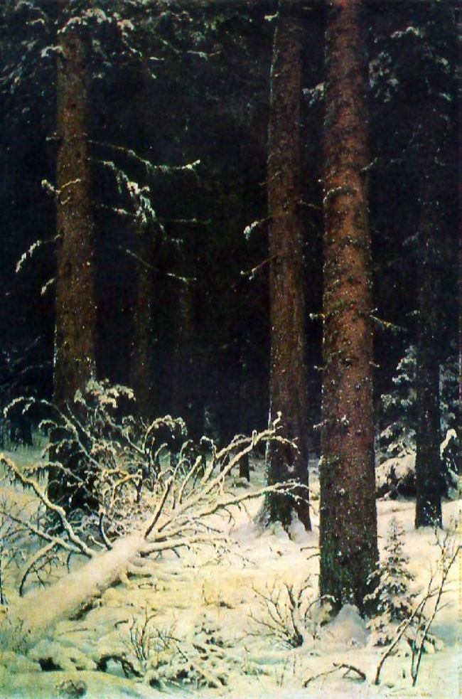 A fir forest in winter. 1884