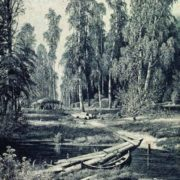Forest River, 1893