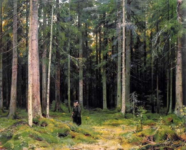 In the forest of Countess Mordvinova. Peterhof, 1891