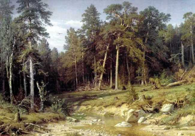 Pine forest in the Vyatka province, 1872