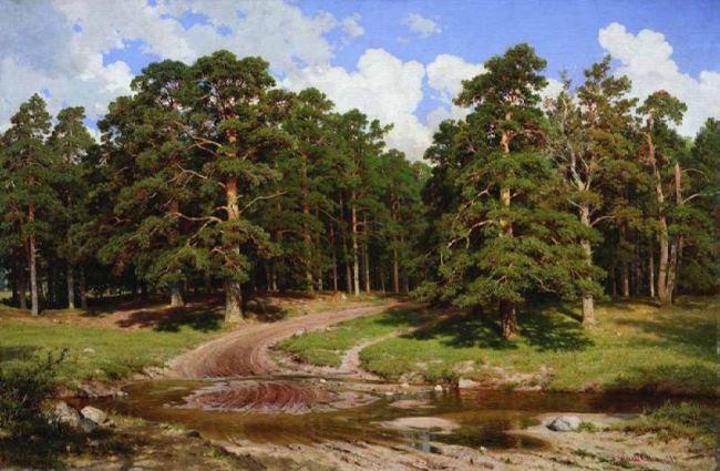 Pinery, 1895