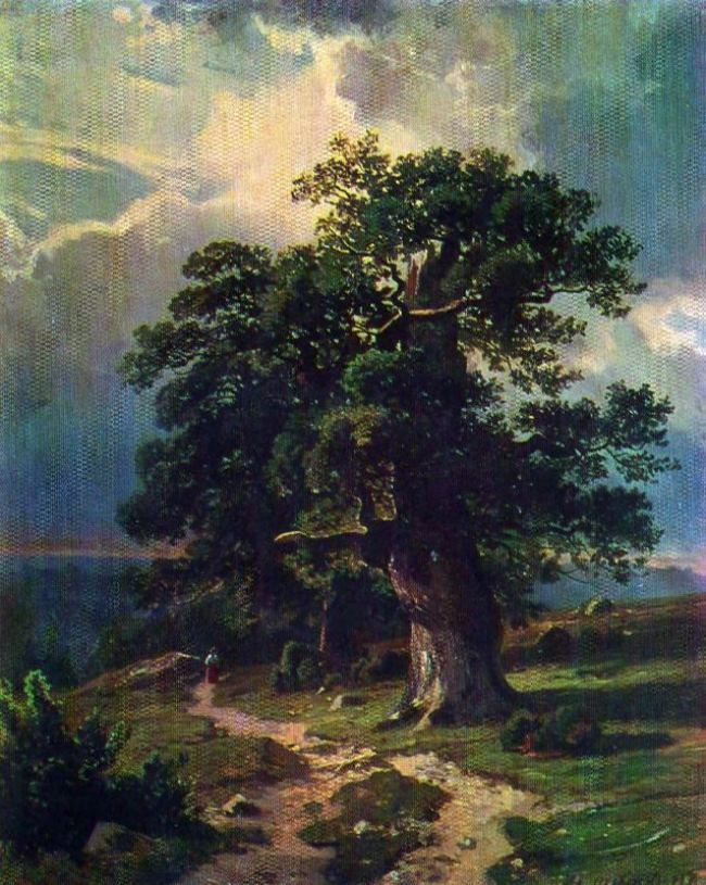 The oaks. Etude. 1865