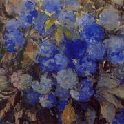 Blue hydrangeas. 1907