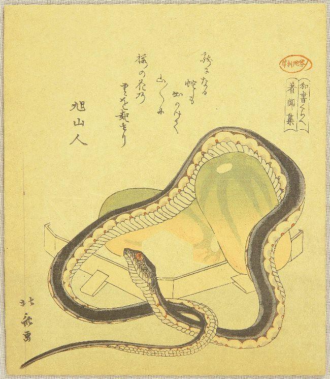 Snake and pumpkin. Katsushika Hokusai, circa 1890s
