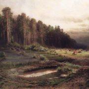 Elk Island in Sokolniki