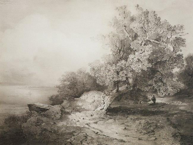 Old oak near the cliff above the river