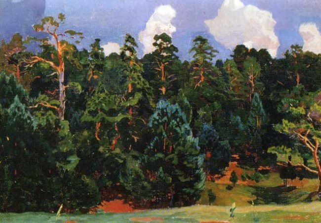 Pine trees