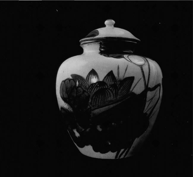 Tea jar. Satsuma kilns. 18th century. Faience