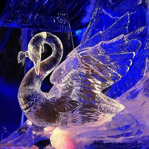 Wonderful ice sculptures