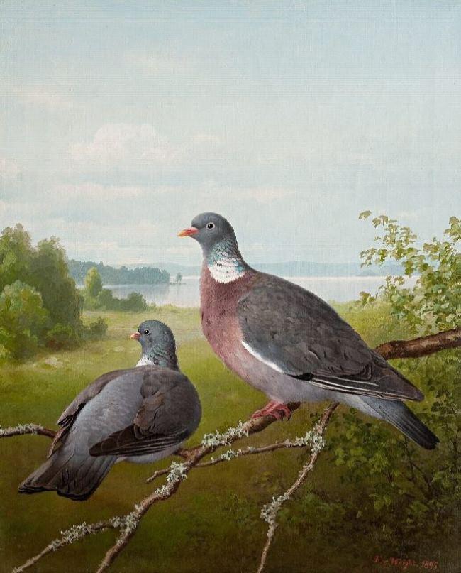 Ferdinand von Wright 1822-1906